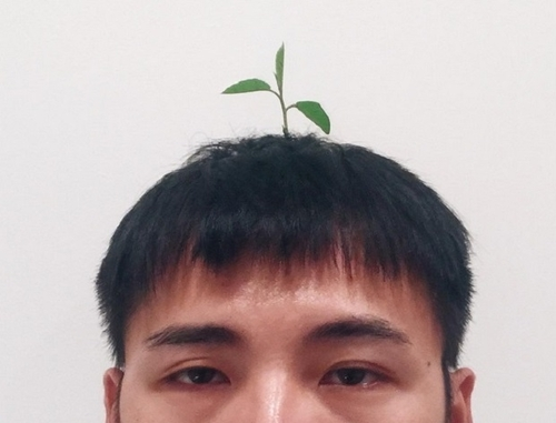 Dernière mode en Chine : les sprout heads