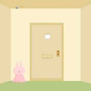Escape from the room with rabbit