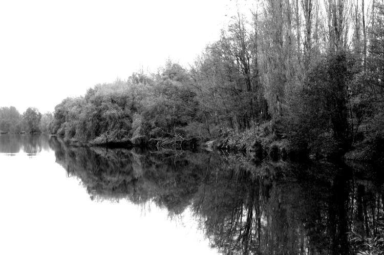 Promenade dans les gravières, Mably, octobre 2012 #1
