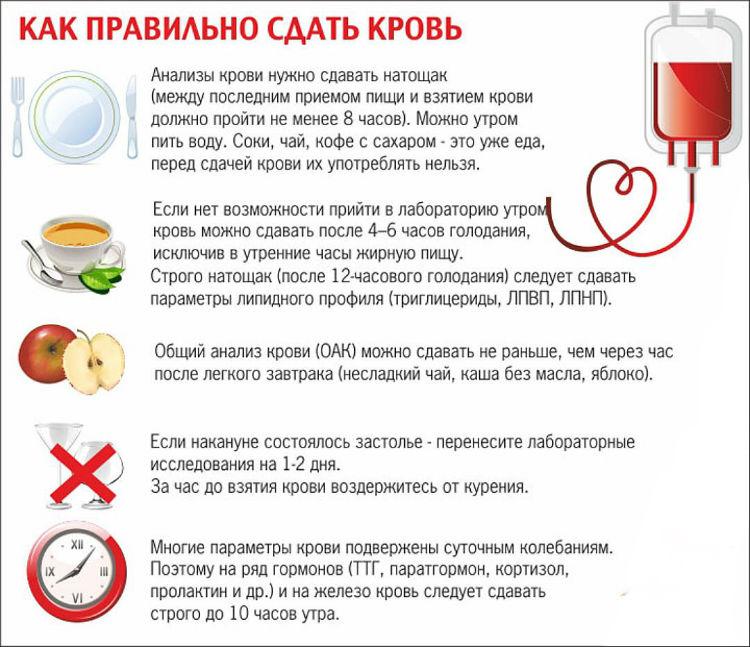 Как правильно подготовиться к сдачи анализа крови на сахар