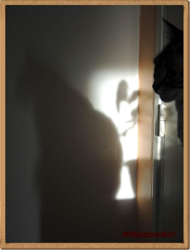 Jeux d'ombre