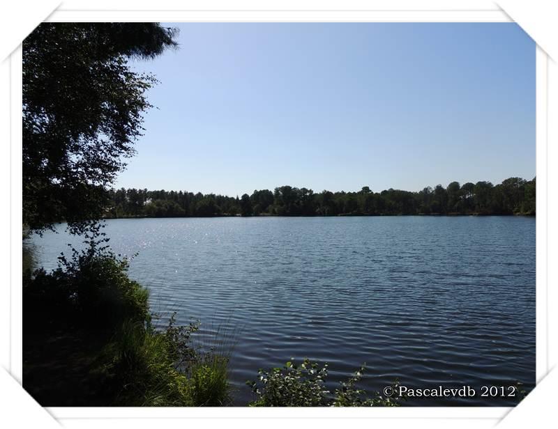 Les lacs de Lamothe, Bernadas et grand Bernadas à Hostens - 5/7