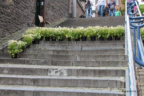montagne de bueren en fleurs