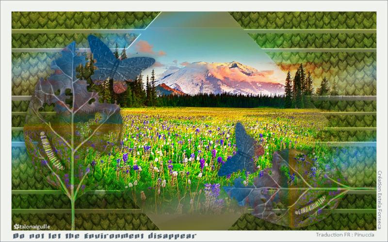 *** Meadow ***