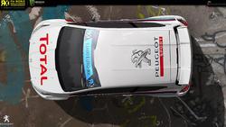 Team Libre rallycross Peugeot 208