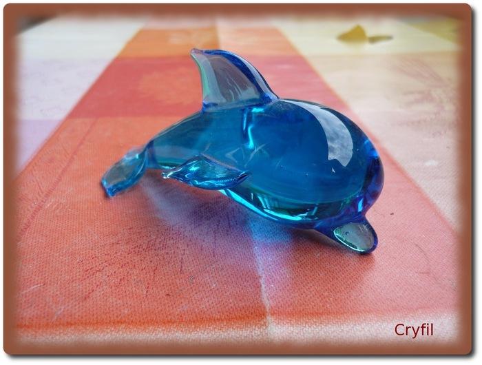 kesaco dauphin trouvé