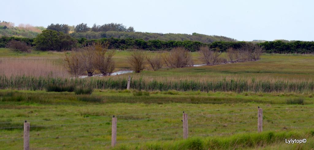 Le domaine de Beauguillot.