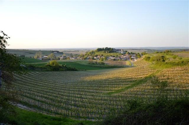 Blog de sylviebernard-art-bouteville : sylviebernard-art-bouteville, Bouteville (Charente)