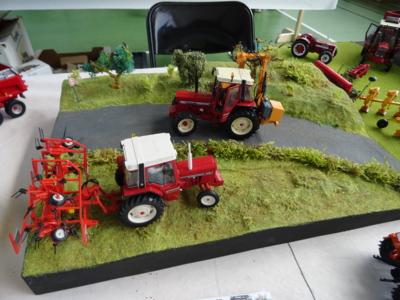 Blog de melimelodesptitsblanpain : Méli Mélo des p'tits Blanpain!, Exposition de miniatures agricoles à Labastide-Murat