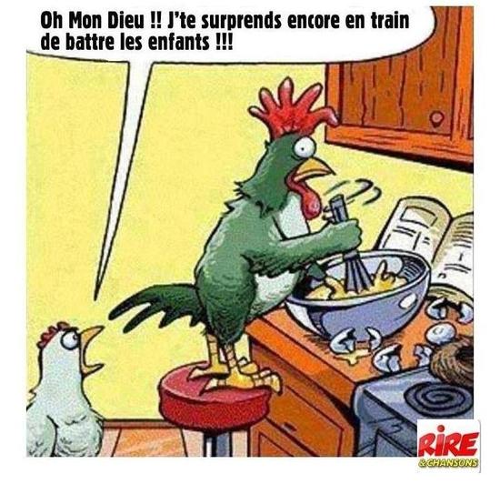 Coq-Poule-Oeufs