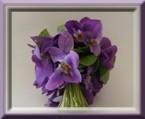 Imagettes bouquets de Violettes