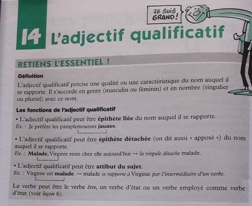 B / L'adjectif qualificatif