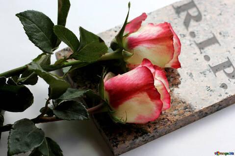 """Résultat de recherche d'images pour """"Rip repose en paix"""""""