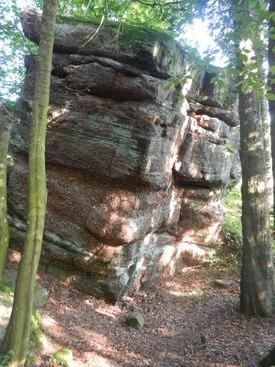 Les crêtes des Vosges 2: Urmatt Selestat GR5 - août 2013