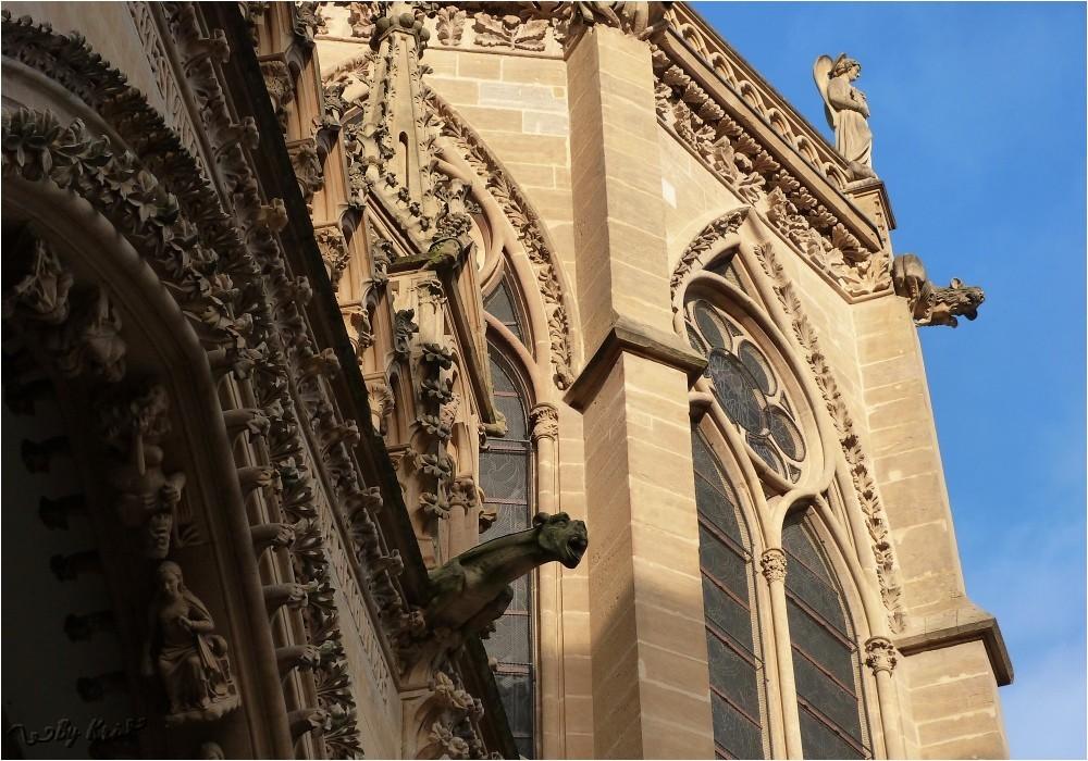 Metz (Fr-57) ~ Ca gargouille à la Cathédrale Saint Etienne ...