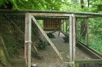 Parc animalier Bouillon 2013 enclos 111