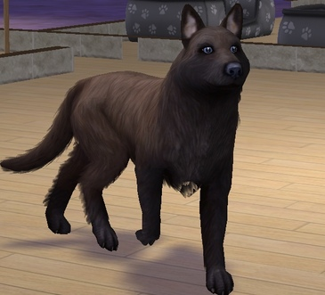 I love dogs (résulta virtuel sastifaisant)