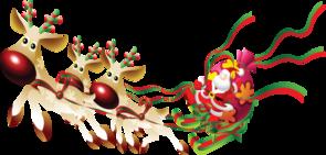 Joyeuse Fête de Noël