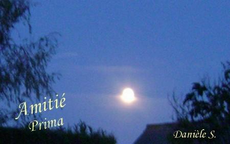 nuit-de-lune.jpg