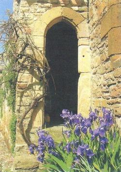 L'iris symbole des bonnes nouvelles