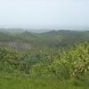 la vue de la baie de Las terrenas.JPG
