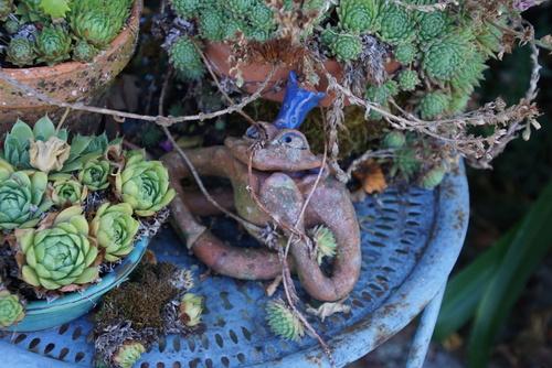 Le jardin d'Entêoulet : le paradis de Renée