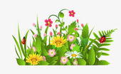 Nouveautés du printemps !