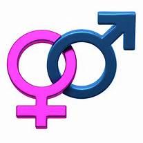 Gender et théorie du Genre : l'esprit qui est à l'œuvre   (Le Sarment)