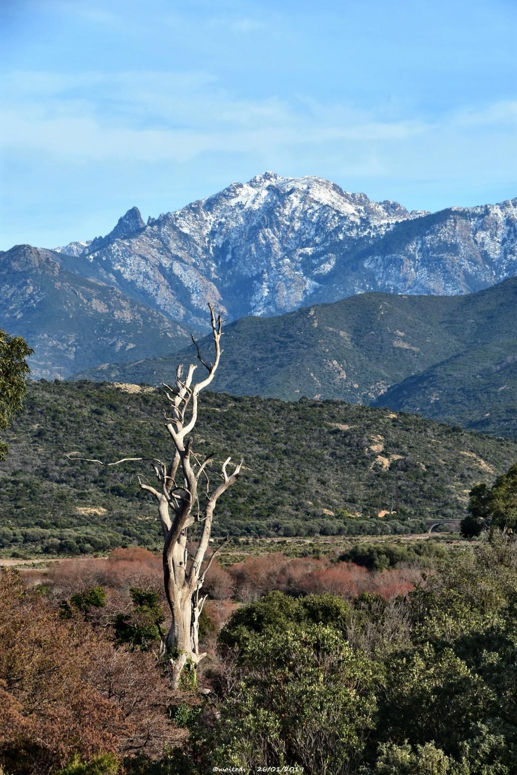Vue sur les montagnes enneigées depuis Galéria