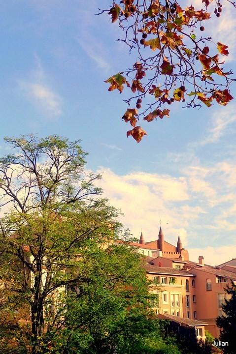 o06---automne.JPG