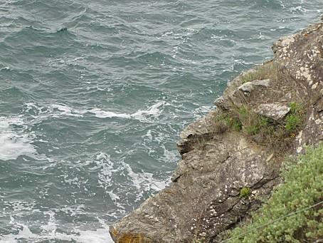 La-Plaine-Sur-Mer-4832.JPG