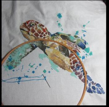 Longevité de la tortue (5)