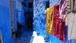 Suivez-nous dans la ville bleue...