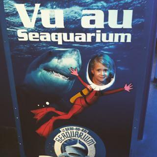 Une visite au Seaquarium au Grau du Roi