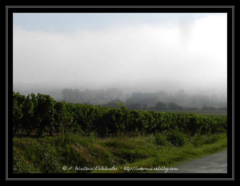 Sur la route de Foissac - Gard