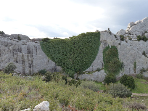 Oppidum des caisses de Jean-Jean (Mouriès - 13)