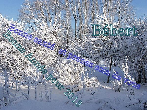 Bonne Année pour 2013