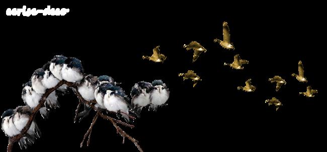 design : vol d'oiseaux sauvages à l'automne
