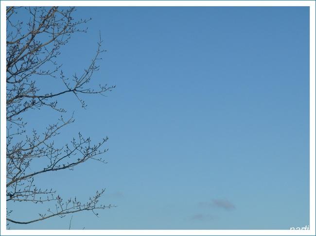 """Mon ciel du Québec en ce lundi 3 février. (Communauté """"petit coin de ciel)"""