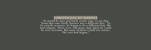 Theme Narnia
