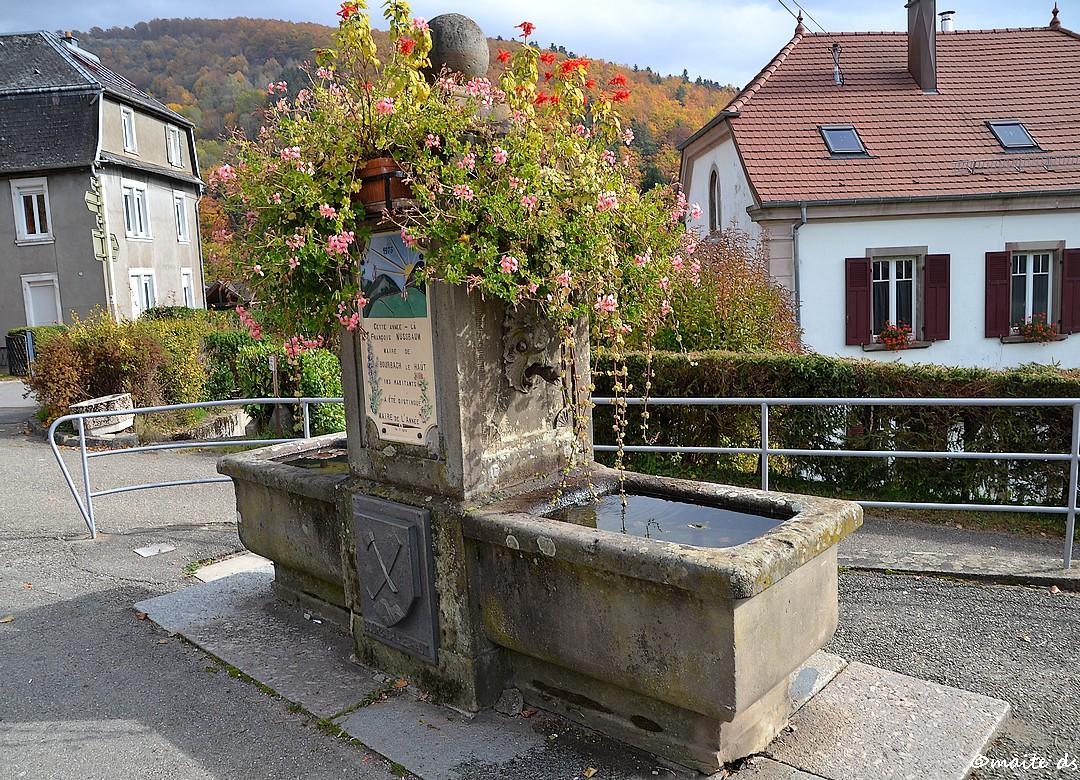 Bourbach Le Haut - Alsace - (2)