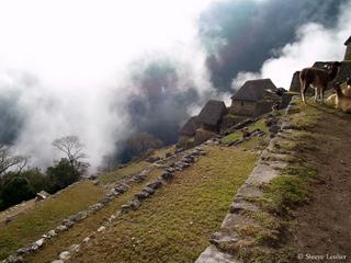 Le Machu Picchu dans les nuages
