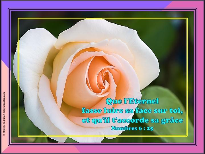 Que l'Eternel fasse luire sa face sur toi - Nombres 6 : 25