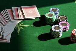 Cara Menentukan Agen Poker Online Terpercaya