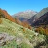Après la traversée du bois de las Artigue, descente face au Lurien