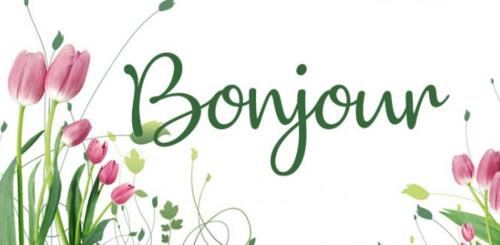 Bon Jeudi, Les Ami(e)s