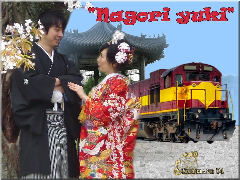 """Défi pour Marjolaine """"Nagori yuki"""""""