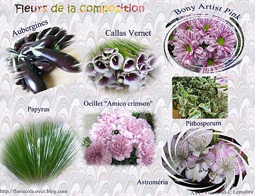 2012 05 23 fleurs de la compo