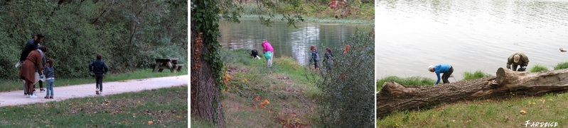 Beau succès pour le nettoyage des bords du Rhône à Guilherand-Granges