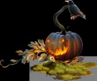 *** Citrouille d'Halloween ***